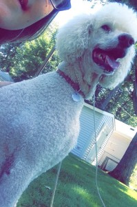 My amazing Chloe